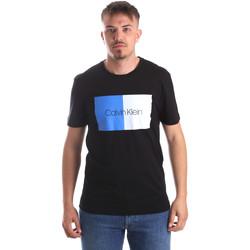 Textiel Heren T-shirts korte mouwen Calvin Klein Jeans K10K103497 Zwart