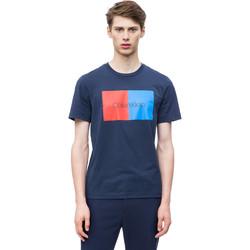 Textiel Heren T-shirts korte mouwen Calvin Klein Jeans K10K103497 Blauw