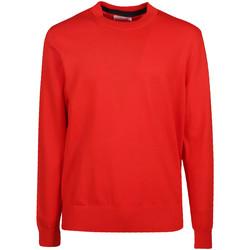 Textiel Heren Truien Calvin Klein Jeans K10K103690 Rood