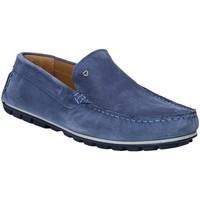 Schoenen Heren Mocassins Rogers 701 Blauw