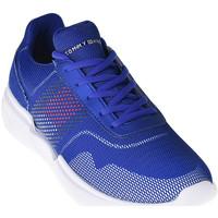 Schoenen Heren Lage sneakers Tommy Hilfiger FM0FM02028 Blauw