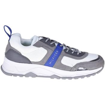 Schoenen Heren Lage sneakers Tommy Hilfiger FM0FM02027 Grijs