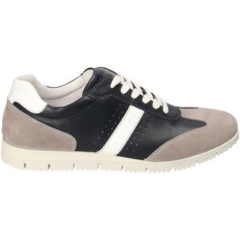 Schoenen Heren Lage sneakers IgI&CO 3121800 Blauw