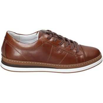 Schoenen Heren Lage sneakers IgI&CO 3138122 Bruin
