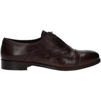 Schoenen Heren Derby Rogers T0001 Bruin