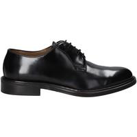 Schoenen Heren Derby Rogers 1019_3 Zwart