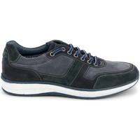 Schoenen Heren Lage sneakers Grunland SC4521 Blauw