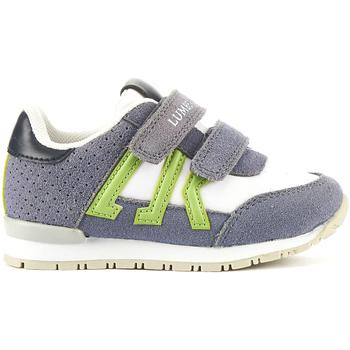 Schoenen Kinderen Lage sneakers Lumberjack SB47505 002 M94 Grijs