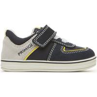 Schoenen Kinderen Lage sneakers Primigi 3374011 Blauw