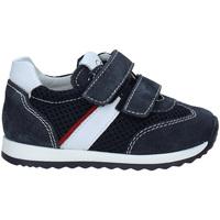 Schoenen Kinderen Lage sneakers Nero Giardini P923452M Blauw