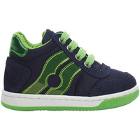 Schoenen Kinderen Hoge sneakers Falcotto 2013553-02-1C38 Blauw