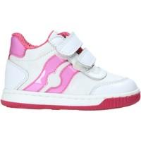 Schoenen Kinderen Hoge sneakers Falcotto 2013558-04-1N11 Wit