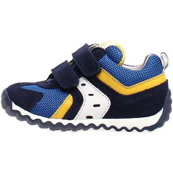 Schoenen Kinderen Lage sneakers Naturino 2013741-01-1C81 Blauw