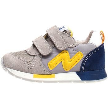 Schoenen Kinderen Lage sneakers Naturino 2013755-02-1B55 Grijs