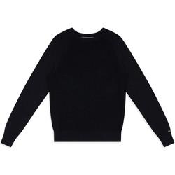 Textiel Heren Truien Calvin Klein Jeans J30J313160 Blauw