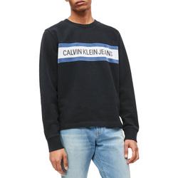 Textiel Heren Sweaters / Sweatshirts Calvin Klein Jeans J30J312448 Zwart
