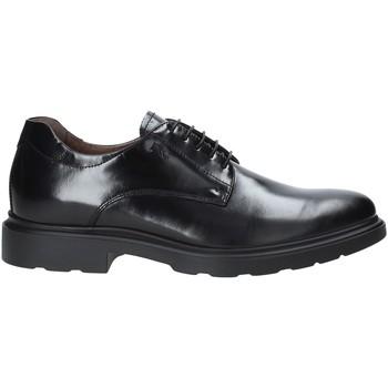 Schoenen Heren Derby NeroGiardini A901141U Zwart
