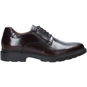 Schoenen Heren Derby NeroGiardini A901141U Rood