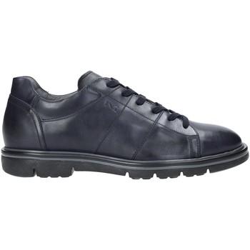 Schoenen Heren Lage sneakers NeroGiardini A901160U Blauw
