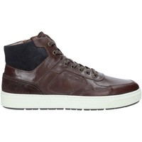 Schoenen Heren Hoge sneakers NeroGiardini A901260U Bruin