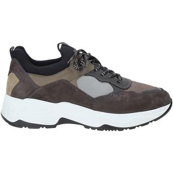 Schoenen Heren Lage sneakers NeroGiardini A901272U Grijs