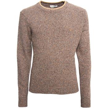 Textiel Heren Truien NeroGiardini A974510U Beige