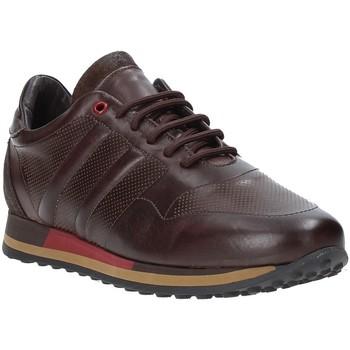 Schoenen Heren Lage sneakers Exton 246 Bruin