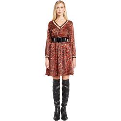 Textiel Dames Korte jurken Denny Rose 921ND15008 Rood