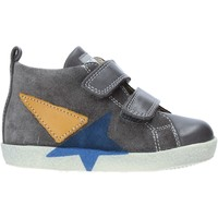 Schoenen Kinderen Hoge sneakers Falcotto 2014042 01 Grijs