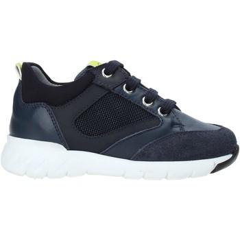 Schoenen Kinderen Lage sneakers NeroGiardini A923730M Blauw