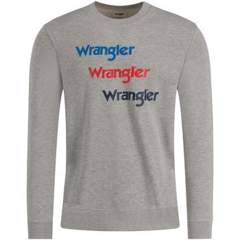 Textiel Heren Sweaters / Sweatshirts Wrangler W6A5HAX37 Grijs