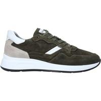 Schoenen Heren Lage sneakers NeroGiardini E001491U Groen