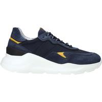 Schoenen Heren Lage sneakers NeroGiardini E001520U Blauw