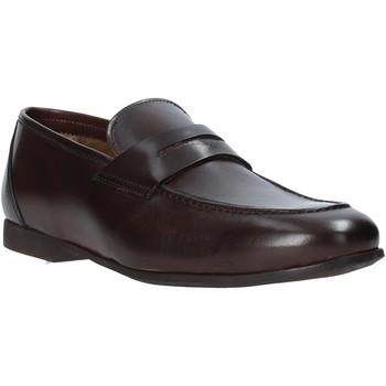 Schoenen Heren Mocassins Rogers CAR01 Bruin