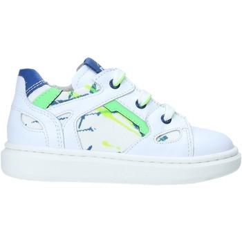 Schoenen Kinderen Lage sneakers NeroGiardini E023805M Wit
