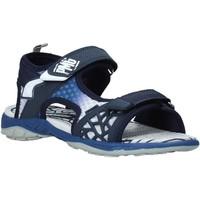 Schoenen Jongens Sandalen / Open schoenen Primigi 5462422 Blauw