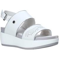 Schoenen Dames Sandalen / Open schoenen Lumberjack SW27006 010 B56 Wit