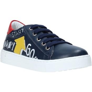 Schoenen Kinderen Lage sneakers Falcotto 2014628 01 Blauw