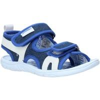 Schoenen Kinderen Sandalen / Open schoenen Primigi 5449322 Blauw