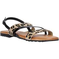 Schoenen Dames Sandalen / Open schoenen Jeiday JUNGLA-SALLY Zwart