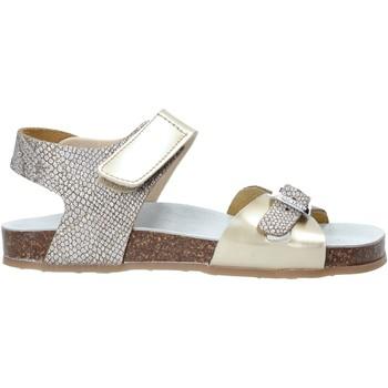 Schoenen Meisjes Sandalen / Open schoenen Grunland SB1501 Anderen