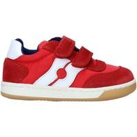 Schoenen Kinderen Lage sneakers Falcotto 2014666 01 Rood