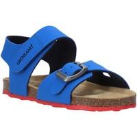 Schoenen Kinderen Sandalen / Open schoenen Grunland SB0372 Blauw