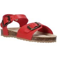 Schoenen Kinderen Sandalen / Open schoenen Grunland SB1551 Rood