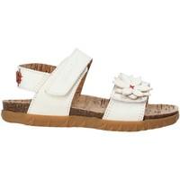Schoenen Meisjes Sandalen / Open schoenen Grunland SB1564 Wit