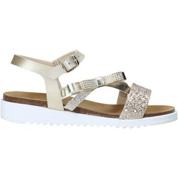 Schoenen Meisjes Sandalen / Open schoenen Grunland SB1317 Anderen