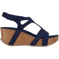 Schoenen Dames Sandalen / Open schoenen Docksteps DSE106243 Blauw