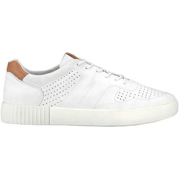 Schoenen Heren Lage sneakers Docksteps DSE106273 Wit