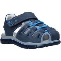 Schoenen Kinderen Sandalen / Open schoenen Primigi 5392711 Blauw