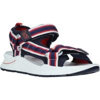 Schoenen Kinderen Sandalen / Open schoenen Primigi 5394200 Blauw